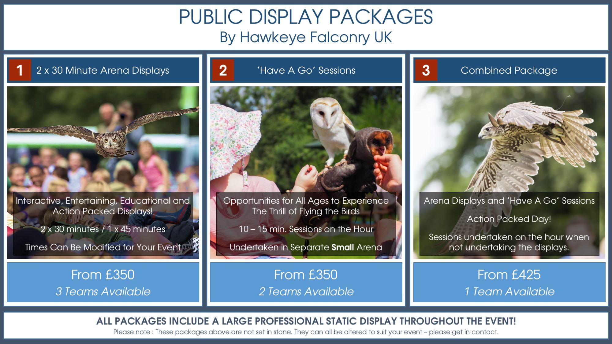 Public Falconry Displays - Package 1,2,3