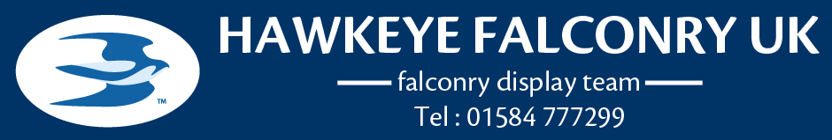 Hawkeye Falconry UK