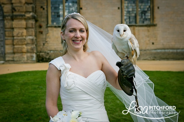 Birds of Prey Weddings