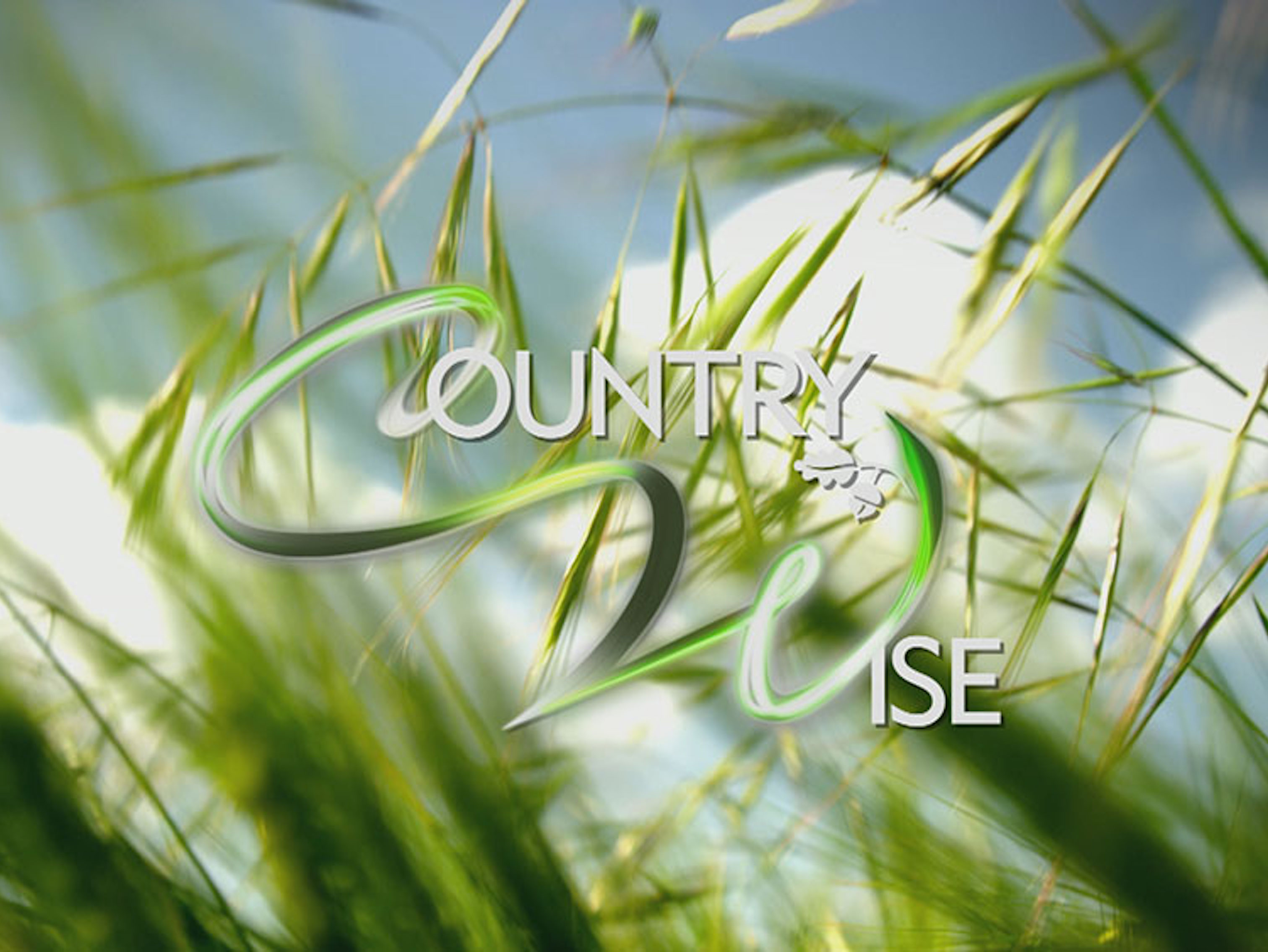 Country Wise