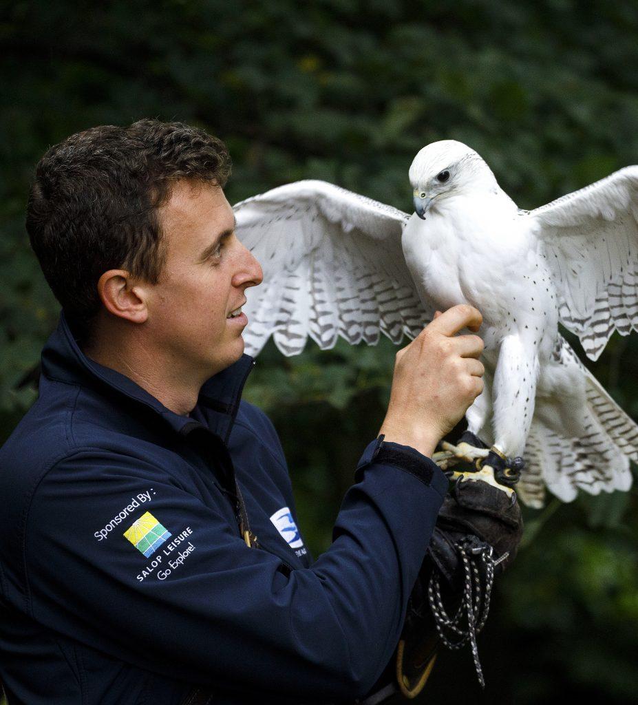 Alistair Leese with Gyr Falcon